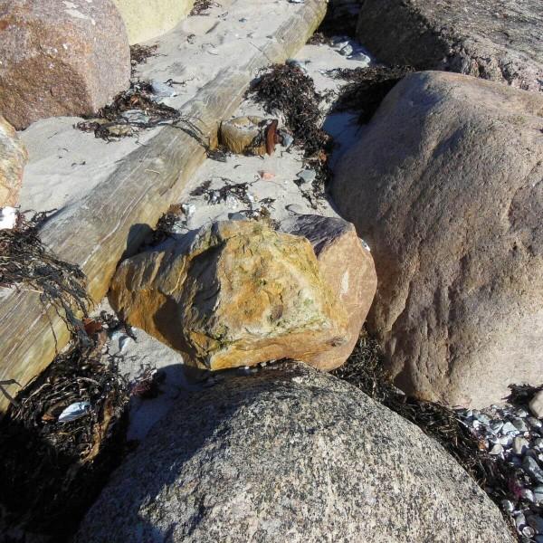 Adventskalender 2021 Sand, Stein und Holz