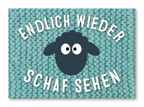 Endlich wieder Schaf sehen